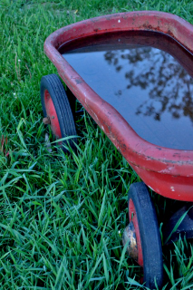 Red Wagon (2)